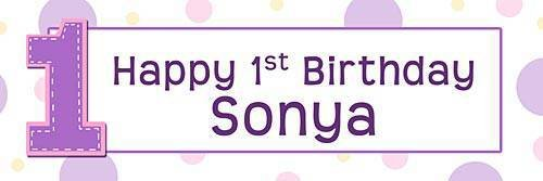 Girl Personalized 1st Happy Birthday Banner (Vinyl Birthday Banners Personalized)