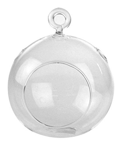 Homeford FWG00HCH0104_06X clear Glass Globe Terrarium Air...