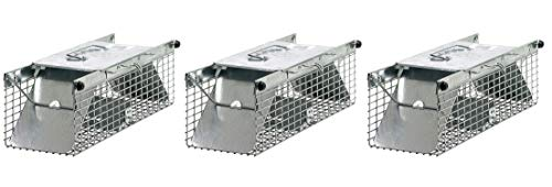 Havahart 1025 Small 2-Door Live Animal Trap – Ideal catching Squirrels, Chipmunks, Rats, Weasels (Pack of 3) ()