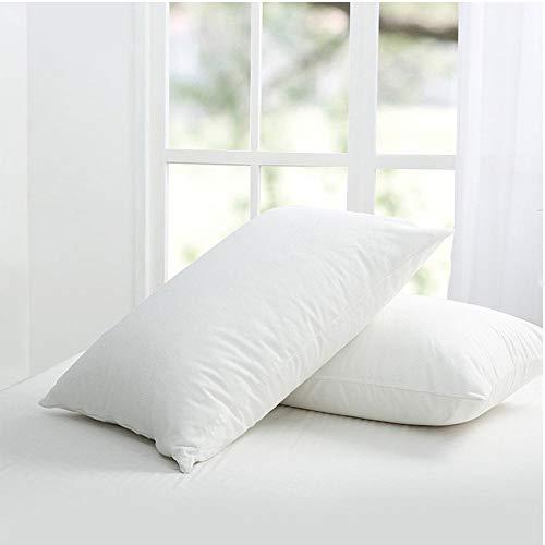 Set of 2 Bedecor Hypoallergenic Bed Bug Proof Zippered Waterproof Pillow Encasement King Size (21 x 37)