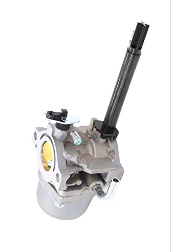 Carburetor Air Filter Fuel Hose Filter Shut Off Valve Carb For Briggs & Stratton 591378 699966 699958 796321 696132 Snowblower Storm Responder Troy-bilt Generator Sears Chipper Engine Motor