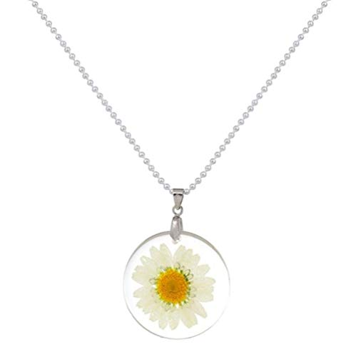 (stylesilove Womens Pressed Natural Daisy Flower Resin Pendant Necklace (White with Leather Rope) (White with Leather Rope) (White with Silver Chain))