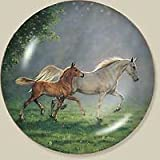 Wild Wings Playtime Horses by Chris Cummings 8.25 inch Decorative Collector Plate,multicolor