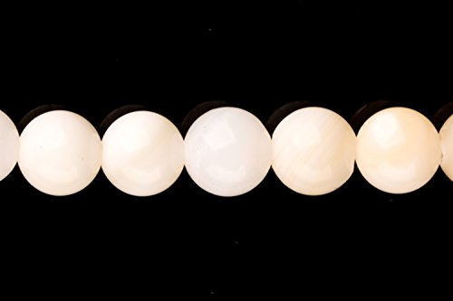 White-Lip Sea Shells Round Shell Beads Size:6x6mm