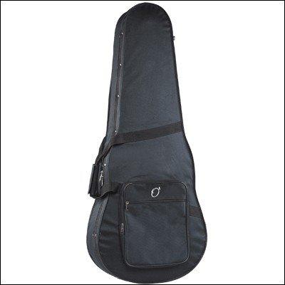 Amazon.com: ESTUCHE GUITARRA ELECTRICA STYROFOAM CON LOGO: Musical Instruments