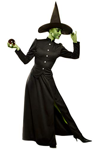 Franco Wicked Witch Plus Size Costume-2XL Black]()