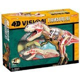 4D Vision Tyrannosaurus Rex Anatomy Model (Model Tyrannosaurus)