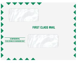 (EGP Double Window Tax Return Mailing Envelope, Moisture Seal, Quantity 100, Size 9.5 x 11.5)