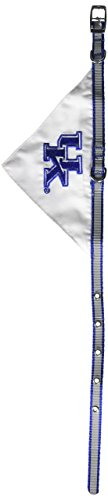 Mirage Pet Products Kentucky Wildcats Bandana for Dogs and Cats, Small
