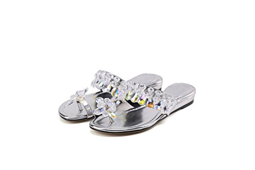 Flats Silver Casual Flop Sandals Qin Women's amp;X Flip awqn7x4Uf