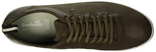 Uomo khaki Sneaker Verde Calvict Kha Boxfresh Fx1S7qq