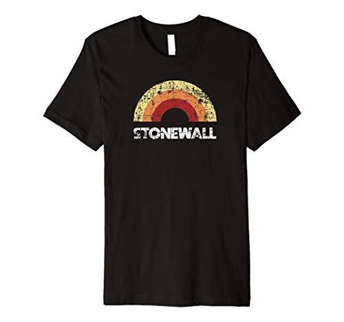 Stonewall Pride Vintage Rainbow Retro Shirt Dark Premium T-Shirt