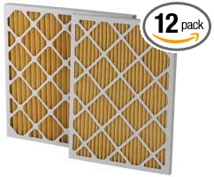 5ef63c81215 Image Unavailable. Image not available for. Color  20 x 20 x 1 quot  MERV  11 Pleated Furnace Filters - 12 Pack