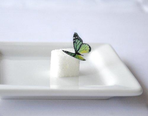 Edible Butterflies © - Mini Assorted Green Set of 48 - Cake