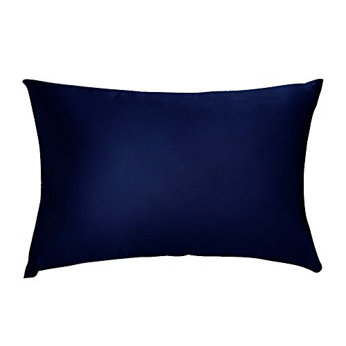 Blue Silk Pillow - LULUSILK 16mm Both Sides Natural Silk Pillowcase 100 Pure Mulberry Silk Pillow Cover for Hair and Skin Anti Wrinkle Zipper Closure Standard Size Navy Blue 1pc