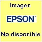 (Epson Premierart 13 Inch x 20 Feet Water Resistant Canvas (SP91220))