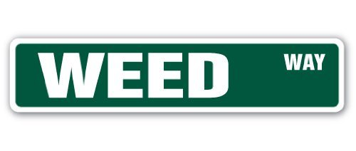 Weed Street - Cartel de hierba de Marihuana 4:20 Smoke 420 ...