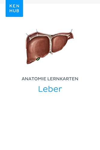 Anatomie Lernkarten: Leber: Lerne alle Organe unterwegs (Kenhub ...