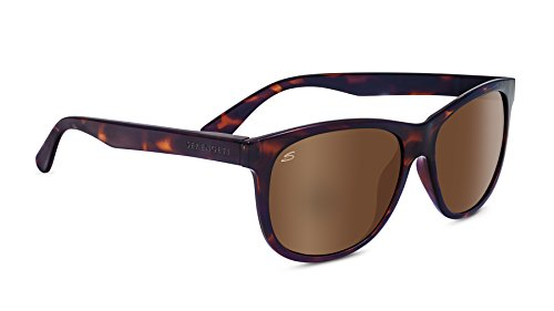 Serengeti 8361 Ostuni Polarized Drivers Sunglasses, Shiny Dark Tortoise Frame by Serengeti