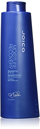 moisture recovery conditioner dry hair
