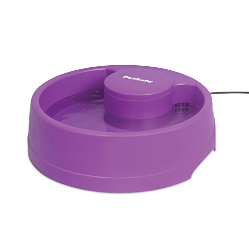 (PetSafe Current Pet Water Fountain, Circulating Drinking Fountain for Cats and Dogs, Medium, Purple, 80 oz. Water Capacity)
