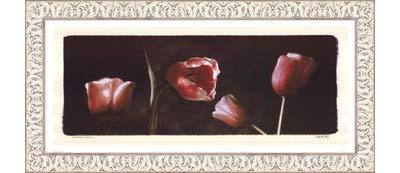 Illuminating Tulips I by Judy Mandolf – 21 x 9インチ – アートプリントポスター LE_40524-F9711-21x9 B01NAWT5MX Ornate White Frame
