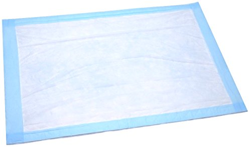 Disposable Underpad 25 Count (Size 23Wx36L) - Blue Hospital Bed and Chair Incontinence Protector Pad for Adult, Child, or Pets - Absorbent Waterproof Chux by BrightCare