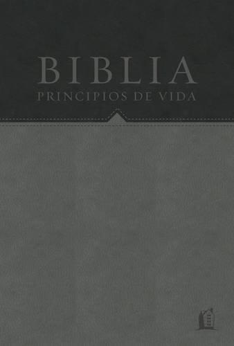 Biblia Principios de vida del Dr. Charles F. Stanley: Recurso para los principios de la vida (Spanish Edition)