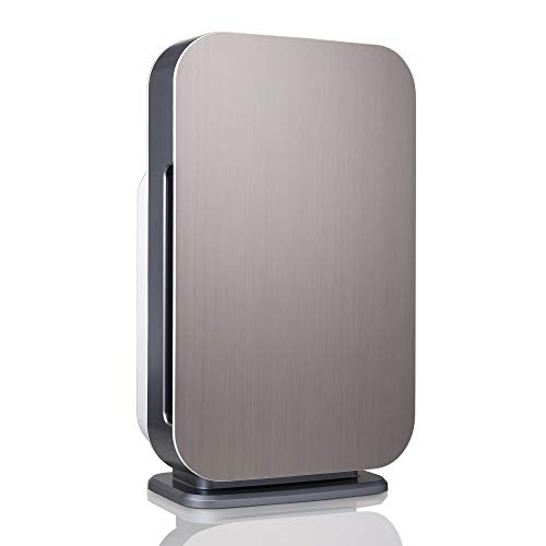 Alen BreatheSmart FLEX Air Purifier for Bedrooms and Offices, 700 Sqft. Coverage Area, True HEPA Filter for Allergies, Cedar Fever, Pollen, Dust, Dander and Fur in Brushed Stainless