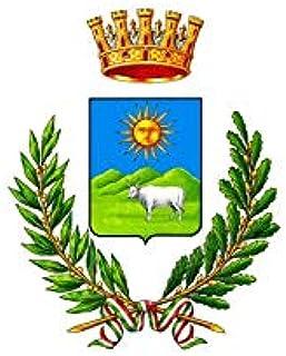 AL PRODUCTION Bandiera in Tessuto Nautico Misura 150x220 Provincia Nuoro