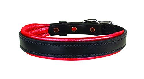- Perri's Padded Leather Dog Collar, Black/Metallic Red, Large