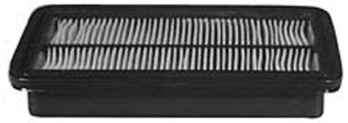 Hastings AF1056 Panel Air Filter Element