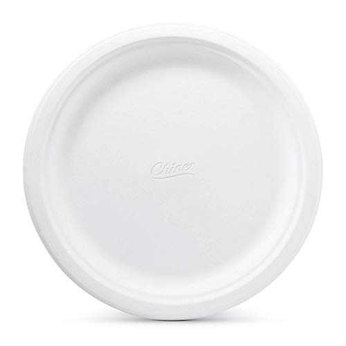 Chinet - Paper Dinner Plates - 165 ct, white color