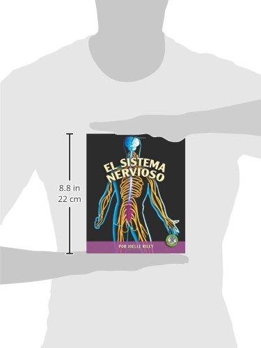 El Sistema Nervioso/the Nervous System (Libros Sobre El Cuerpo Humano Para Mandrugadores/early Bird Body Systems) (Spanish Edition) by Ediciones Lerner