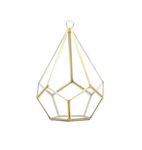 WGV Tear Drop Triangular Geometric Glass Pannel Terrarium