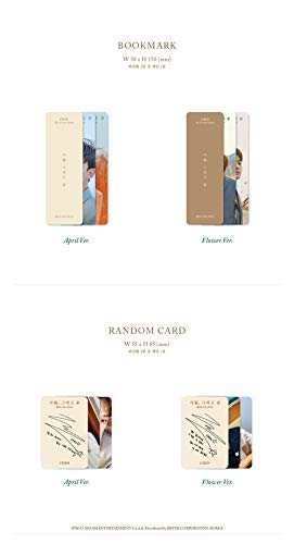 SM Entertainment CHEN EXO - April, and a Flower [Flower ver.] (1st Mini Album) CD+Photobook+1Photocard+1Bookmark+Folded Poster+Double Side Extra Photocards Set by SM Entertainment (Image #5)