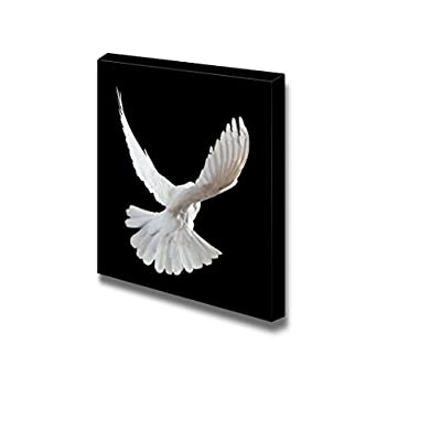 Canvas Prints Wall Art - A Free Flying White Dove Isolated on a Black Background - 24