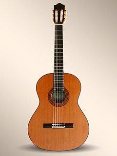 Alhambra 6P cedro: Amazon.es: Instrumentos musicales