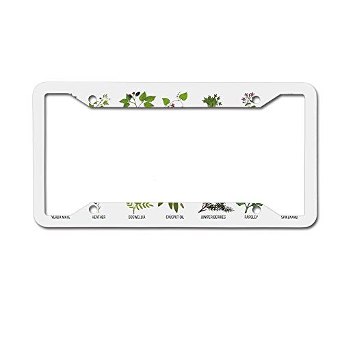 (Dinzisalugg Custom Aluminum Metal License Plate Frame Tag Holder Cute,Natural Treatment Infographic Scheme with Healthy Plants and Names Herbalism Themed License Plate Frame 4 Holes and Screws)