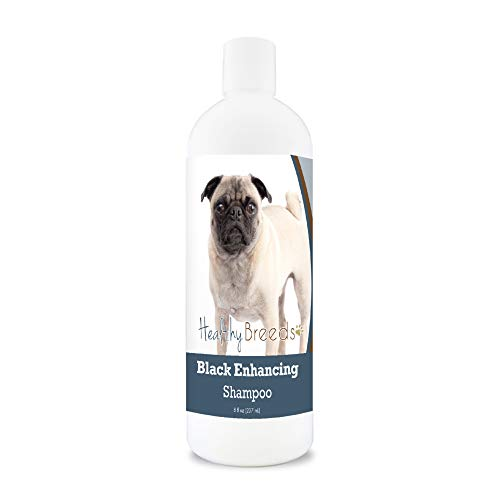 Healthy Breeds Black Coat Color Enhancement Shampoo for Black or Darker Color Fur with Aloe and Vitamin E 8oz