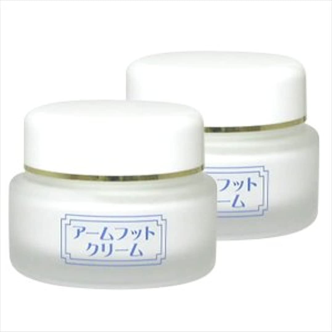 見つける誘惑乱す薬用デオドラントクリーム アームフットクリーム(20g) (2個セット)