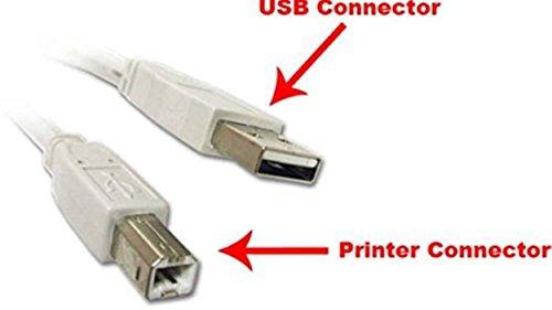 PremiumAV 5-Meter USB Printer Cable (White)