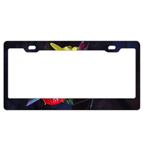 GGRGVR Car License Plate Frame,Anthurium Calla Lily Flowers Bouquets Vase Aluminium License Plate Covers with Free Screws Fasteners + Screw Caps
