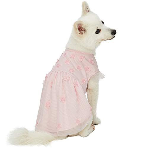 (Blueberry Pet 2019 New My Little Princess Dog Tulle Dress in Baby Pink with Dainty Flower, Back Length 12