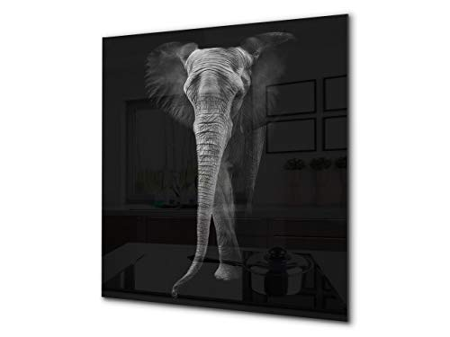 - Toughened glass backsplash - Art glass design printed glass splashback BS21B Animals B Series: Black And White Elephant 6