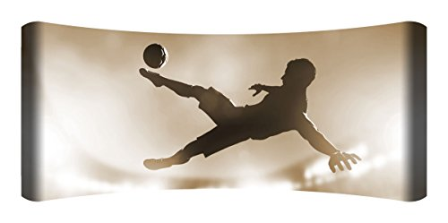 Next Innovations 48'' X 19'' Hd Curved Wall Art Soccer Kick Home Decor by Next Innovations