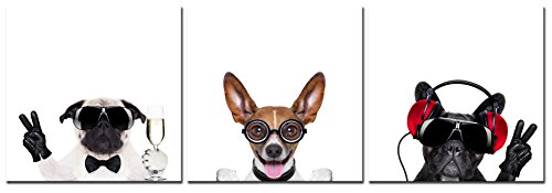 (Natural art - Cool Dogs with Glasses Animals Photos to Prints Paintings on Canvas Wooden Framed Ready to Hang (30×30cm×3) (12×12in×3))