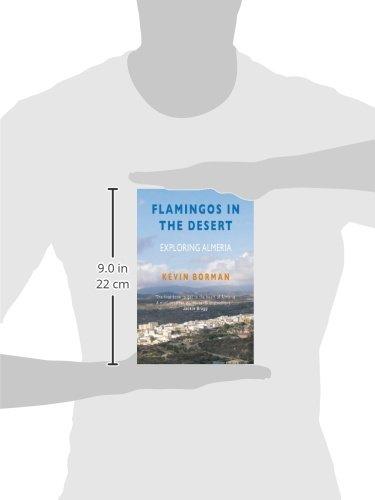 Flamingos in the Desert [Idioma Inglés]: Amazon.es: Borman, Kevin ...