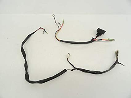 Amazon.com: 94 Kawasaki KDX 200 Used Tail & Head Light Wiring ... on electrical harness, alpine stereo harness, amp bypass harness, engine harness, cable harness, nakamichi harness, dog harness, pet harness, maxi-seal harness, obd0 to obd1 conversion harness, battery harness, safety harness, suspension harness, pony harness, oxygen sensor extension harness, radio harness, fall protection harness,