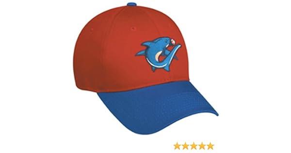 2f9d81728ce Amazon.com   Threshers Minor League Adult Hat   Sports Fan Baseball Caps    Sports   Outdoors